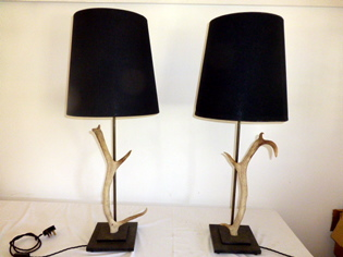 Picture of Pair of Antler Lamps