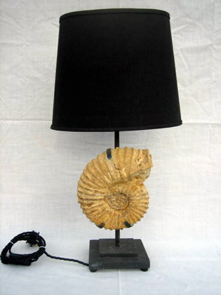 Ammonite fossil table lamp