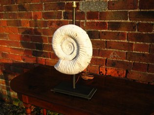 Picture of Fossil table lamp