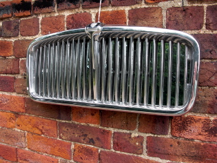 Jaguar grill mirror
