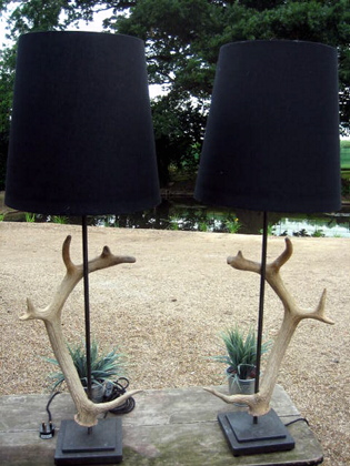Picture of Pair of horn lamps