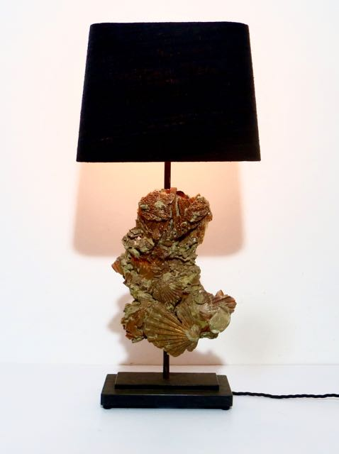 3 million year old fossilised scollop lamp