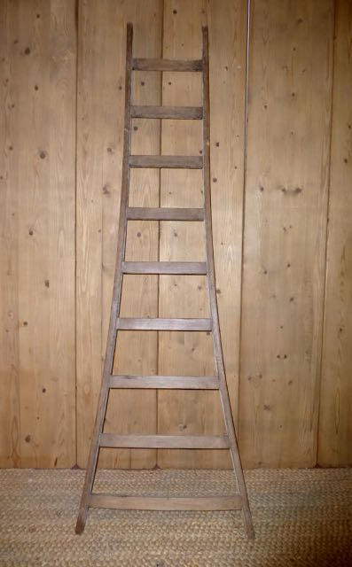 Picture of French ladder