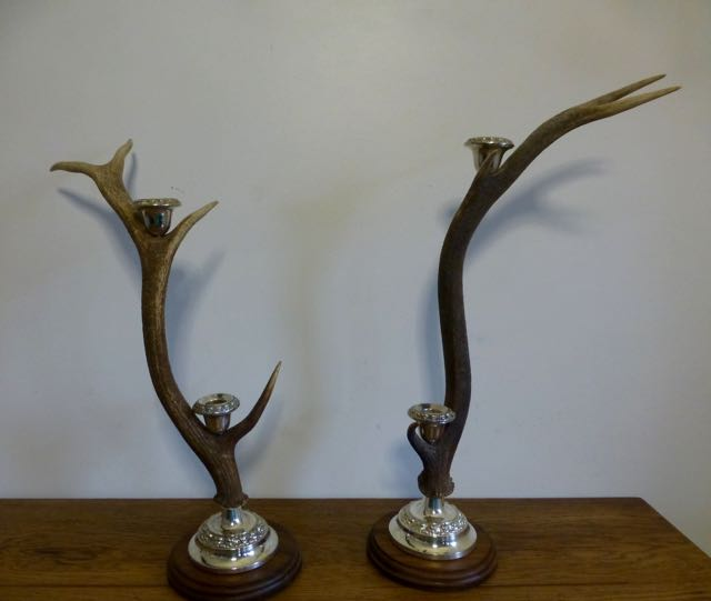 Picture of Stag horn candelabras