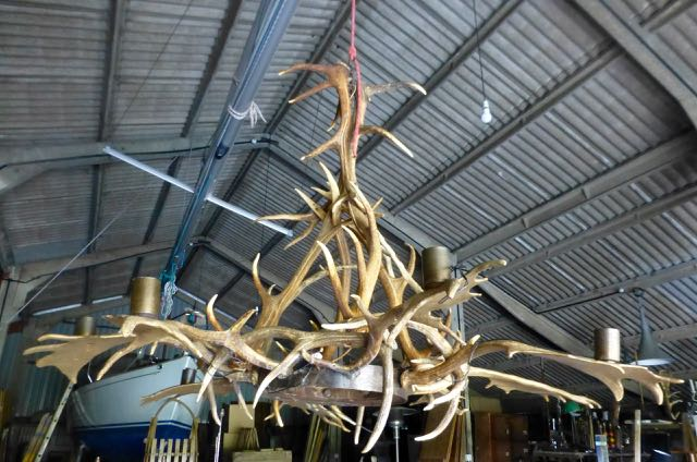 Large red deer Chandelier