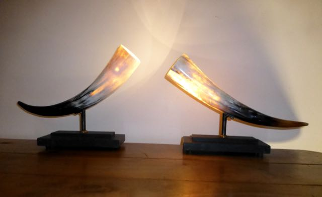 Picture of Pair of horn LED lighs