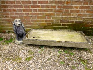 Picture of Stone trough and dog