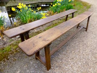 Picture of Pair f oak benches